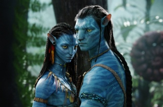 Audiences-TV-Avatar-TF1-en-tete-Barnaby-et-France-3-frolent-les-trois-millions_news_full